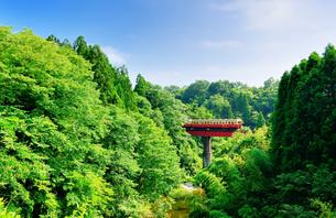 小湊鉄道の写真素材 [FYI00300089]