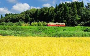 小湊鉄道の写真素材 [FYI00300093]