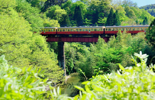 小湊鉄道の写真素材 [FYI00300095]