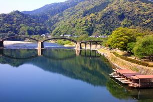 新緑の錦帯橋と錦川に浮かぶ鵜飼舟の写真素材 [FYI00300169]