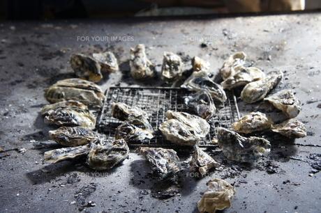 牡蠣焼きの写真素材 [FYI00300246]