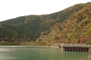 奥多摩湖周辺の紅葉風景の写真素材 [FYI00300325]