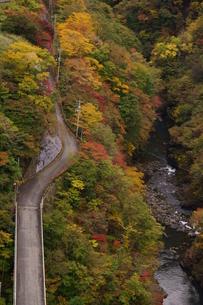 奥多摩湖周辺の紅葉風景の写真素材 [FYI00300334]