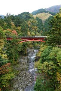 奥多摩湖周辺の紅葉風景の写真素材 [FYI00300335]