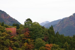 奥多摩湖周辺の紅葉風景の写真素材 [FYI00300344]