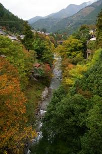 奥多摩湖周辺の紅葉風景の写真素材 [FYI00300347]
