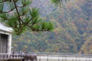 奥多摩湖周辺の紅葉風景の写真素材 [FYI00300353]