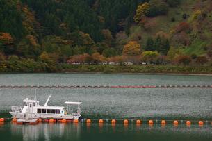 奥多摩湖周辺の紅葉風景の写真素材 [FYI00300356]