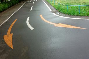 交通標識の写真素材 [FYI00300824]