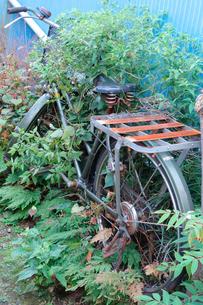 自転車の写真素材 [FYI00301583]