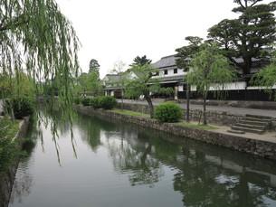 倉敷美観地区の水路の写真素材 [FYI00302130]