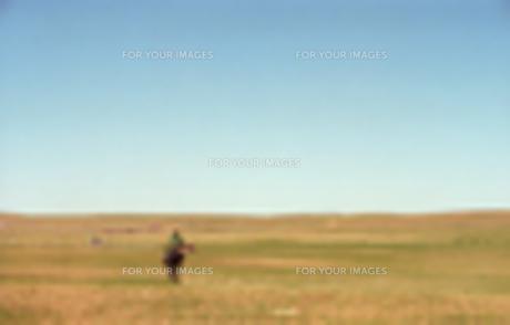 モンゴルの丘に向かっての写真素材 [FYI00302185]