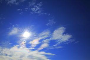 太陽と光彩の写真素材 [FYI00302391]