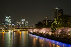 Sakura/Osaka/Yakeiの写真素材 [FYI00302499]