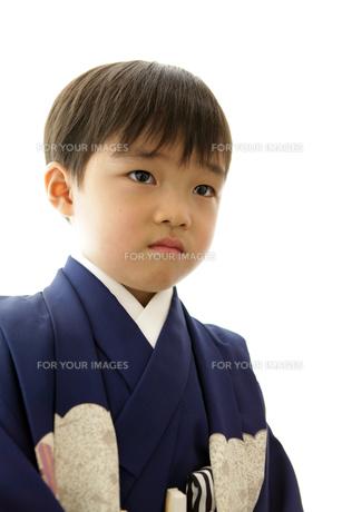 羽織袴を着た七五三の男の子の写真素材 [FYI00302907]