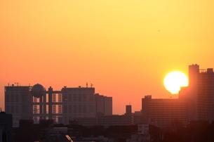 お台場方面に昇る朝日の写真素材 [FYI00302920]