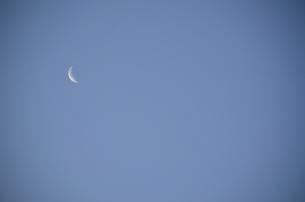 早朝の三日月の写真素材 [FYI00302931]