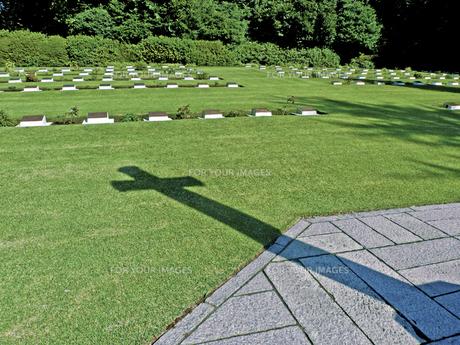 外人墓地の十字架の写真素材 [FYI00303096]