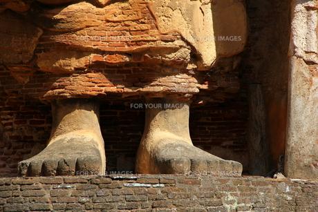 仏の足の素材 [FYI00303215]