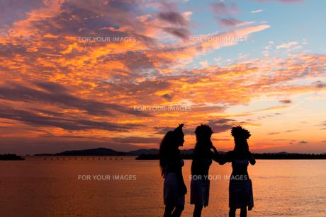 夕日と海辺のフラガールの写真素材 [FYI00303451]