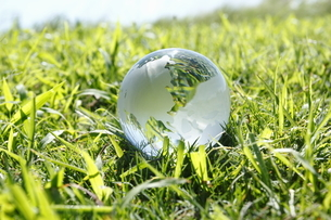 緑の中の地球儀の写真素材 [FYI00303972]
