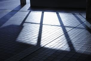 タイル面に映る影の写真素材 [FYI00304091]