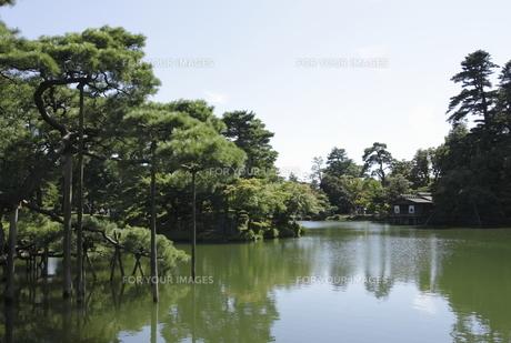 夏の兼六園の風景の写真素材 [FYI00304099]