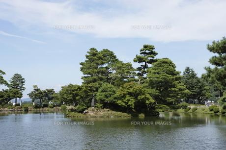 夏の兼六園の写真素材 [FYI00304105]