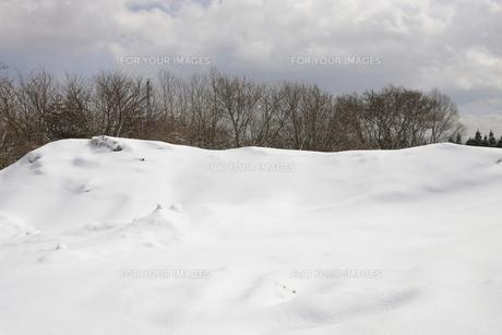積雪の風景の素材 [FYI00304285]