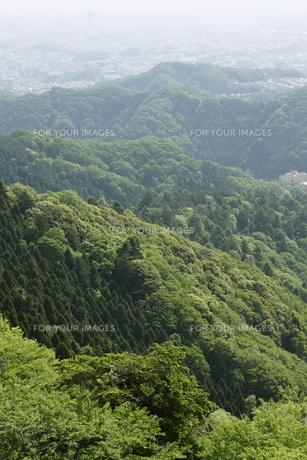 新緑の山並みの写真素材 [FYI00304355]