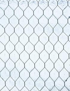 ワイヤー入りガラスの写真素材 [FYI00304413]