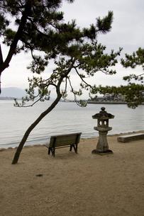海岸沿いのベンチの写真素材 [FYI00304591]