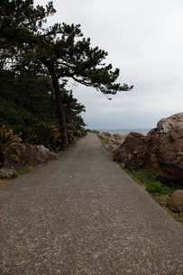 初島海岸の写真素材 [FYI00304613]