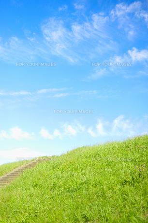 草の土手と青空(縦)の素材 [FYI00304758]