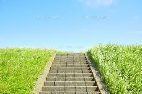 土手の階段の素材 [FYI00304782]