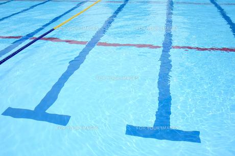 プールの写真素材 [FYI00304795]