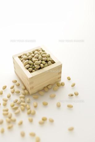 福豆の写真素材 [FYI00304952]