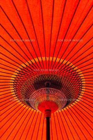赤い野点傘2の素材 [FYI00305007]