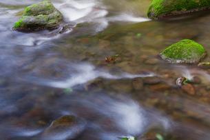 苔の岩と清流の写真素材 [FYI00305505]