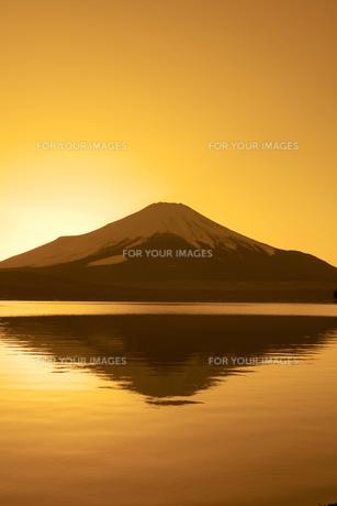 富士夕景(山中湖)の写真素材 [FYI00306685]