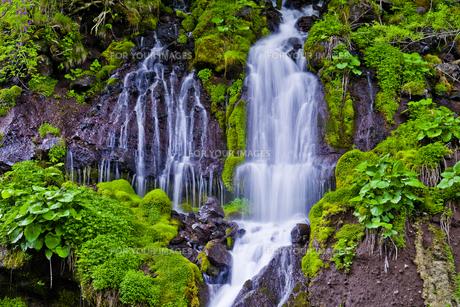 新緑の吐竜の滝の写真素材 [FYI00306898]