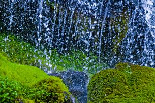 水滴と苔の岩の写真素材 [FYI00306901]
