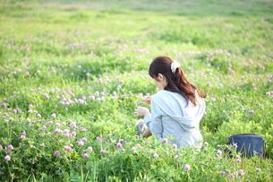 草原の中でたたずむ若い女性の写真素材 [FYI00307647]
