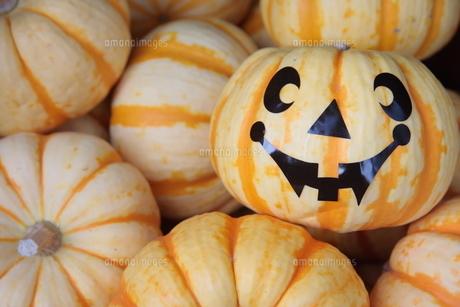 ハロウィンのかぼちゃの写真素材 [FYI00307692]