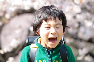 桜の木と叫ぶ男の子の写真素材 [FYI00307730]