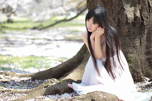 桜の木とドレスを着た女性の写真素材 [FYI00307733]