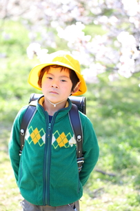 桜と小学1年生の男の子の写真素材 [FYI00307752]