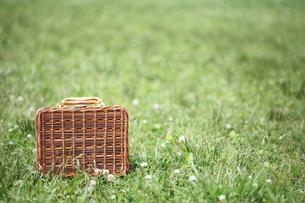 ピクニックバックと芝生の写真素材 [FYI00307769]