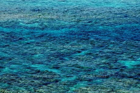 奄美大島の海の写真素材 [FYI00307969]