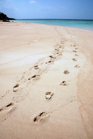 砂浜の足跡の写真素材 [FYI00307995]